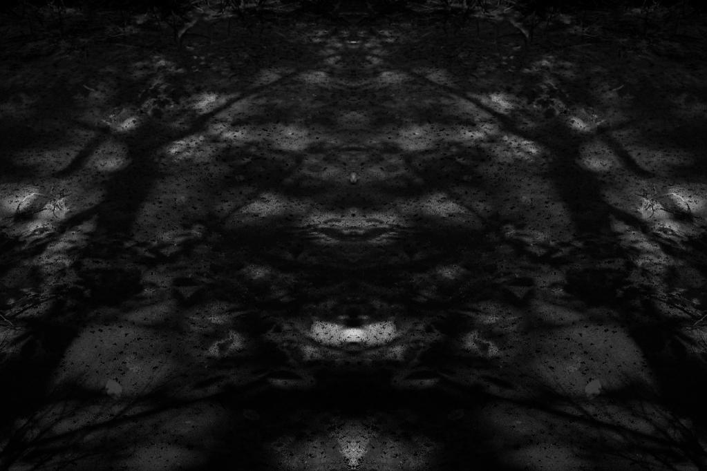 MirrorPondBW.png
