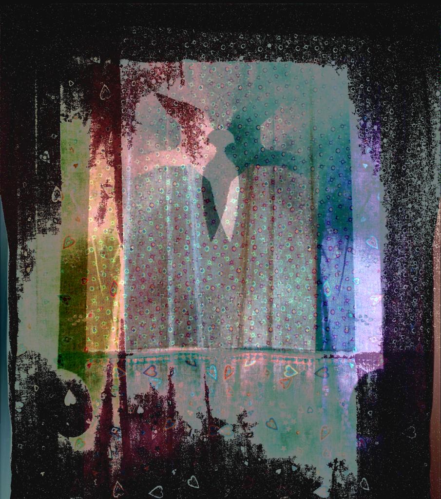 BirdCurtain3.png